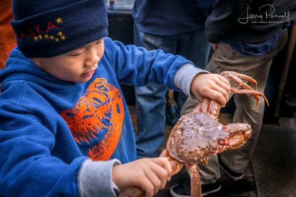aleutian ballad_kid and crab1_190