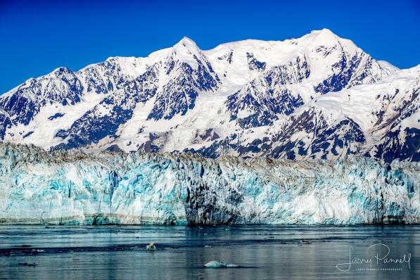hubbard glacier1 copy