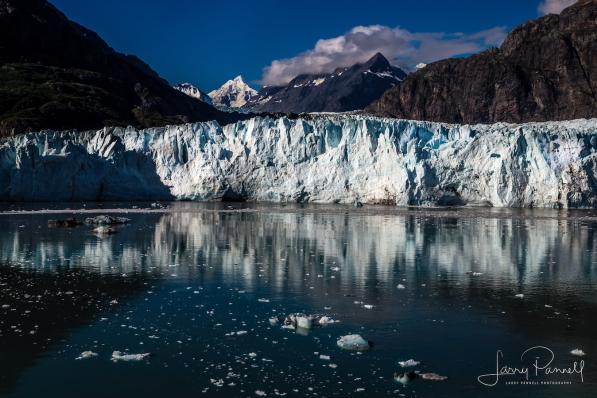marjorie glacier_glacier bay2 copy