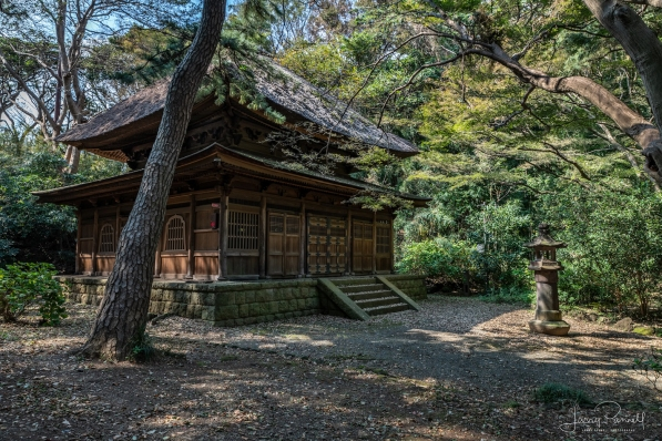 D85_033_tokeiji temple_190