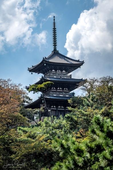 D85_0436_tomyoji temple1_190