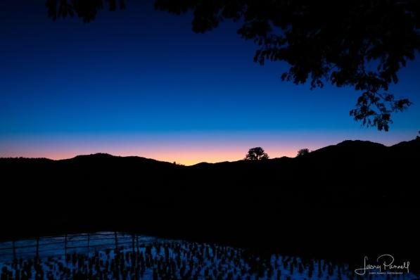 DSC 2871_kalm sunset1_190